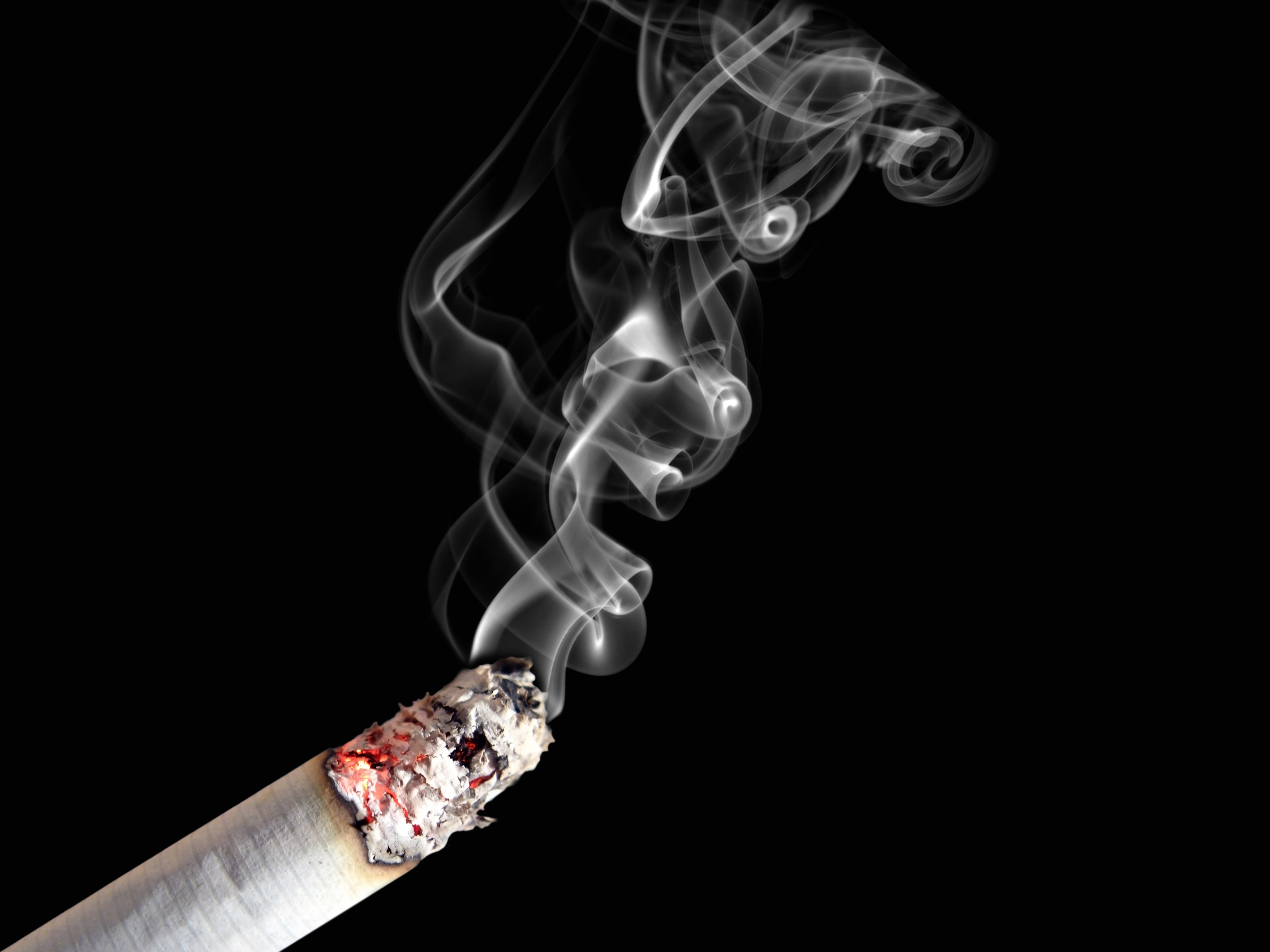 Database Error... Lung Cancer From Smoking Cigarettes